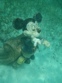 Top 10 Photo Opportunities on Disney's Castaway Cay - Hidden Mickey Mouse