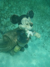Snorkeling at Disney's Castaway Cay