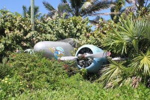 Top 10 Photo Opportunities on Disney's Castaway Cay
