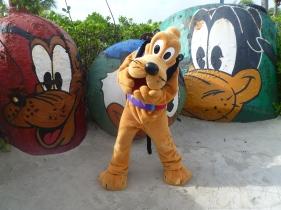 Top 10 Photo Opportunities on Disney's Castaway Cay - Pluto